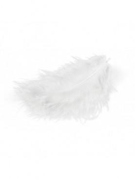 Λευκά φτερά MEYCO hobby